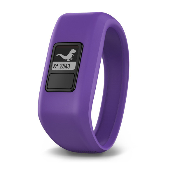 manually add fitbit steps charge 2